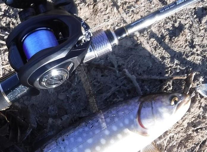 極寒の中考えた釣果とラインの関係